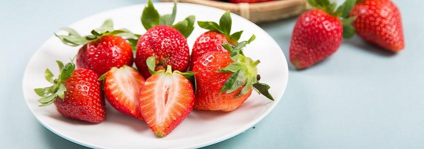 阿里山的有機草莓 | 產地影音