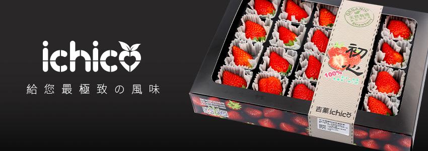 精品級的草莓|吉菓有機農場