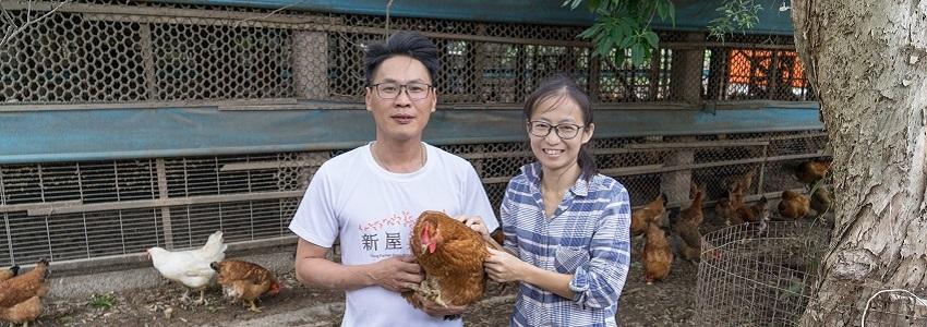 藤舍牧業竹地雞 | 小農故事