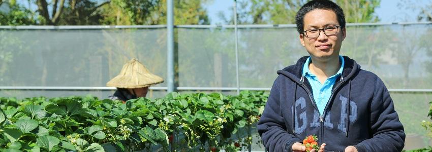 草莓達人農場|產地故事