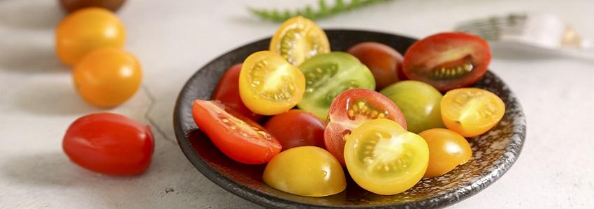 番茄方舟彩色番茄|產地影音