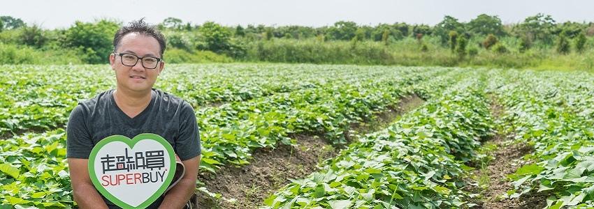 鬆軟香甜有機地瓜 | 佳雨農場 產地影片